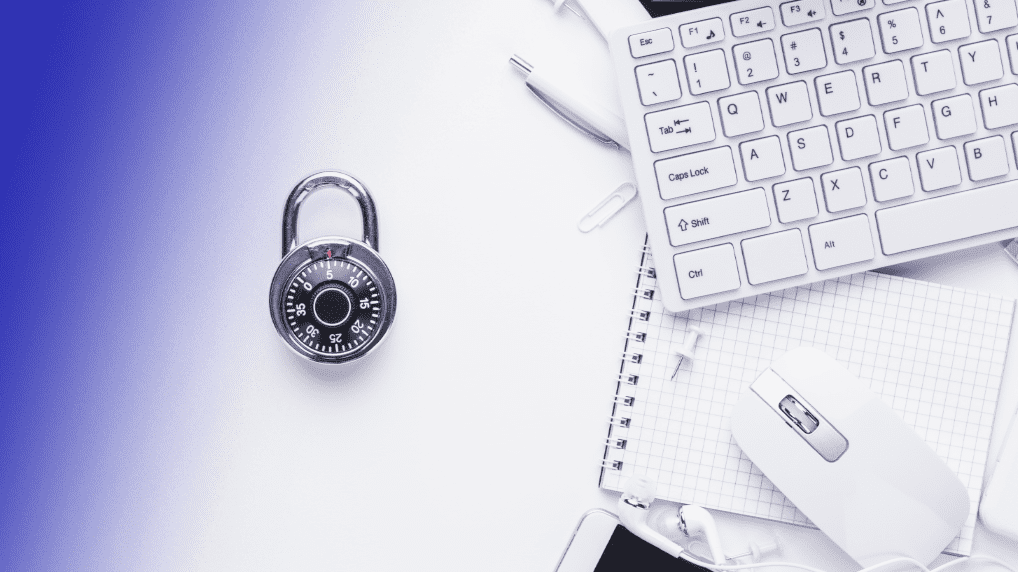 Understanding the Terms of Use and Privacy Policies for Apps in Brazil